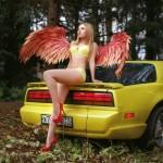 Firebird_4